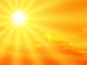 Sunshine Pic